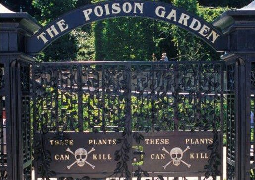 Poison Garden Sows The Seeds For Quirky Way To Spend A Day