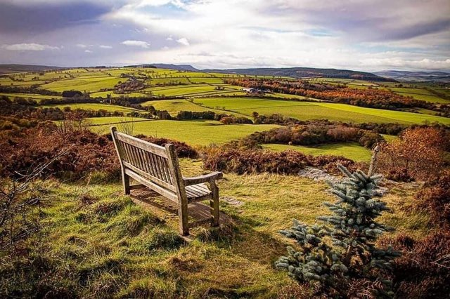 Alnwick Moor, by Janice Eckersly, winner of the CPRE's View from the Doorstep photographic competition.