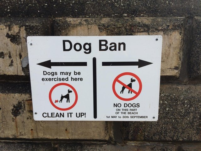 County bosses are looking at potential new rules for dog owners.