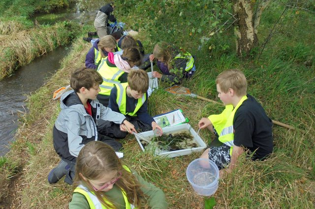 Children are introduced to river plants, insects and amphibians as part of the Tweed Foundation's education programme.