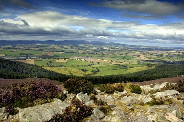 Northumberland's natural resources help absorb carbon dioxide in the atmosphere.