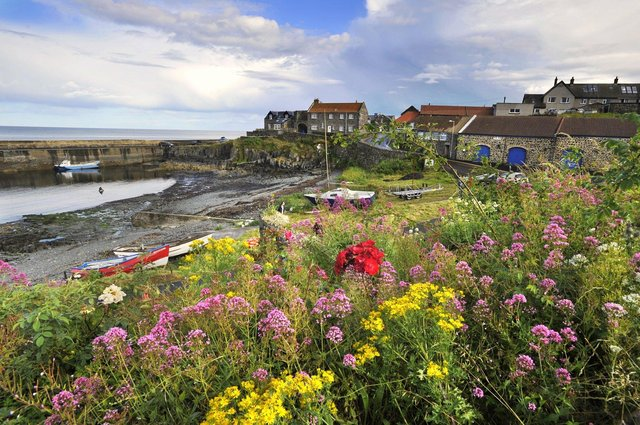 A trial traffic management scheme is planned in Craster.