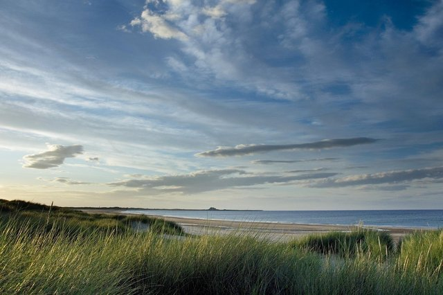 Holy Island, seen in the distance from Ross Back Sands.
