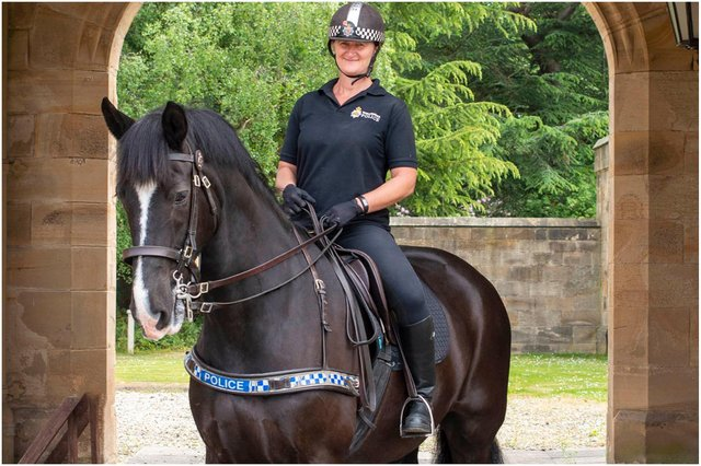 Police horse Percy with rider, PC Joanne Watson, of Northumbria Police's Mounted Section.