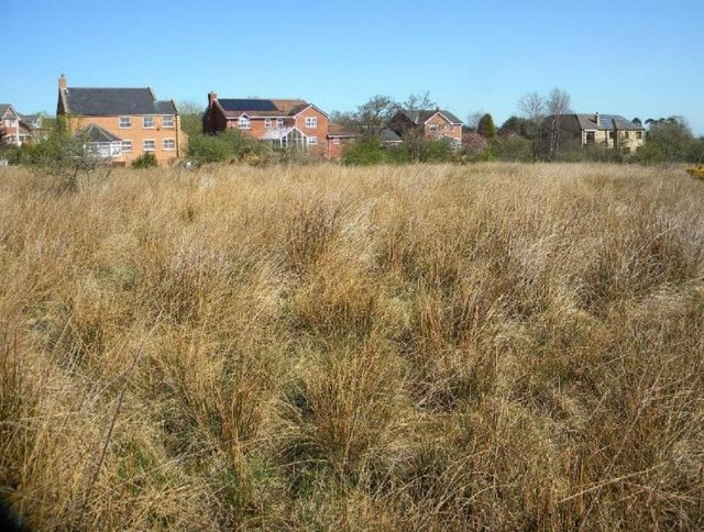 The site of the proposed houses at Swarland submitted with the plans.