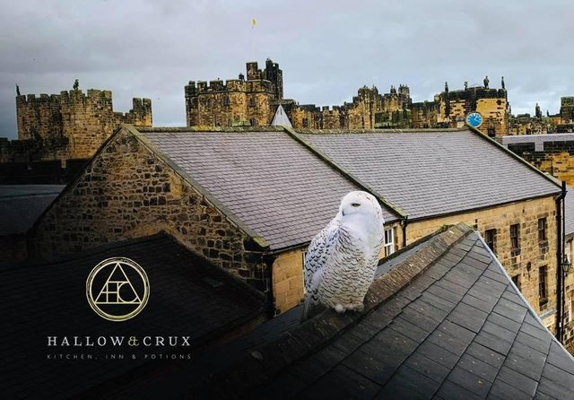 Hogwarts Landing, one of the new wizard-themed rooms at Hallow and Crux, offers views of Alnwick Castle.