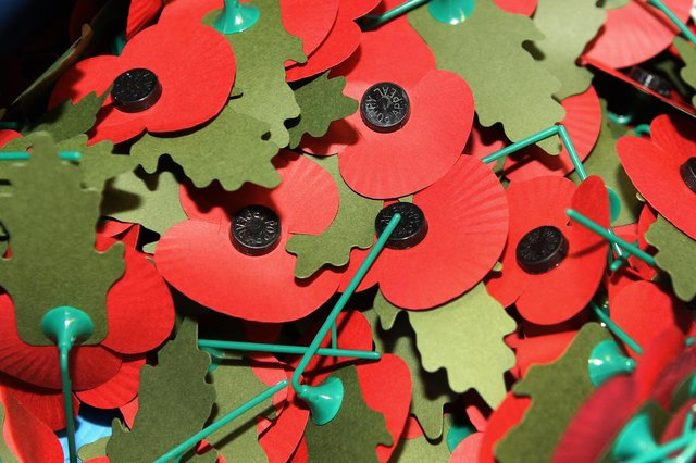 The Royal British Legion is seeking new collectors for this year's Poppy Appeal in the Alnwick area.