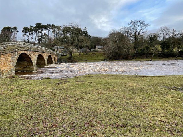 The River Coquet well up on Friday.