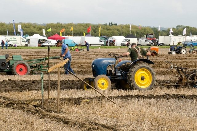 The British Ploughing Championships are being held at Mindrum Mill.