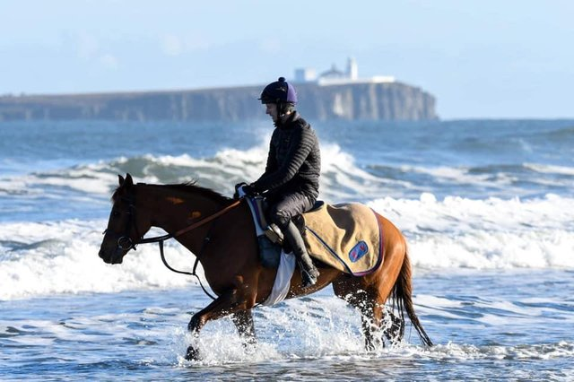Adam Nicol aboard Wise Eagle, getting some cooling down exercise in the sea   Photo courtesy of Michael Fawcus