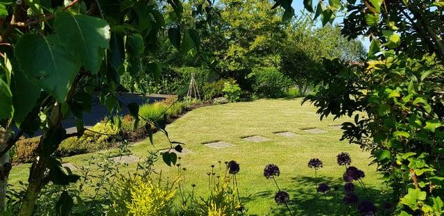 Lawns encourage wildlife to thrive.