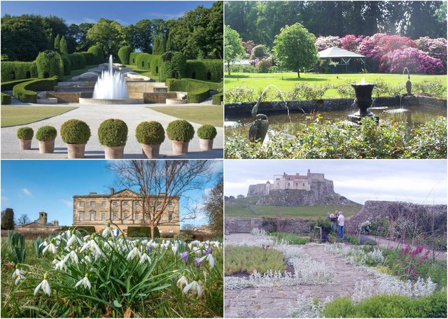 Some of the many gardens to visit in Northumberland this summer.