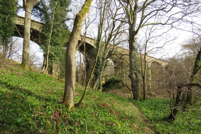 The Cawledge Viaduct. Picture: Tom Lloyd/AVR