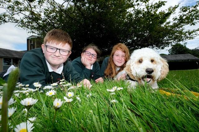 Stuart Wilson, Isla-Rose Black and Amelia Blades, with Chip, the school dog.